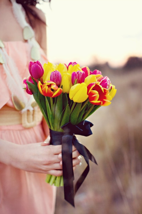 tulipanes1_Malanga